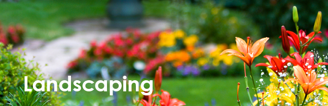 Landscaping Services in York, PA